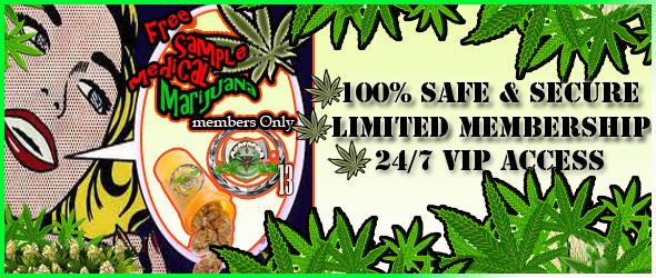 Services az medical marijuana growers association for Hydroponics mesa az