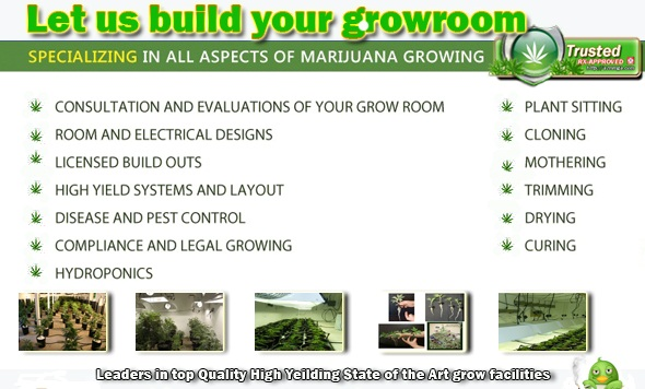 Build A Grow Room Azmmga